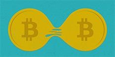 https://cdn.alza.de/Foto/ImgGalery/Image/bitcoin-vs-bitcoincash-nahled.jpg