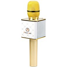 Technaxx BT-X31 Karaoke Mikrofon - Handmikrofon