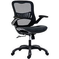 ANTARES DREAM schwarz - Bürostuhl