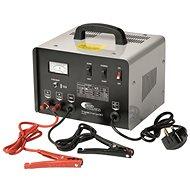 RING professionelles Ladegerät RCBT30 mit Starterquelle, 30 A, 12 V, 24 V - Ladegerät