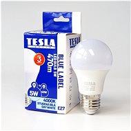 Tesla BULB LED Birne A60 E27 5 Watt - LED-Lampe