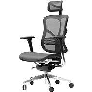Spinergo Business Grau - Bürostuhl