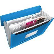ESSELTE Vivida mit einem blauen bin - Dokumentenmappe