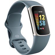Fitbit Charge 5 Steel Blue/Platinum Stainless Steel - Fitness-Armband