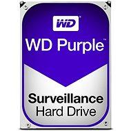 WD Purple 500GB - Festplatte