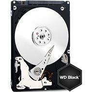 WD Black Mobile 320 GB - Festplatte