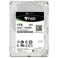Seagate Exos 7E2000 1TB - Festplatte