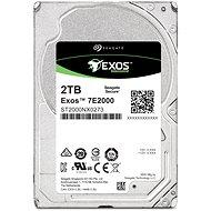 Seagate Exos 7E2000 2TB - Festplatte