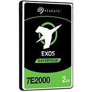 Seagate Exos 7E2000 2 TB 5xxe SAS - Festplatte