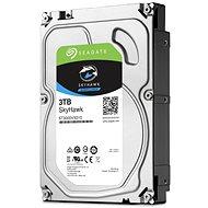 Seagate SkyHawk 3TB - Festplatte