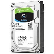Seagate SkyHawk 8TB - Festplatte
