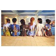 Pink Floyd - Rückseite Katalog - Poster 65 x 91,5 cm - Poster