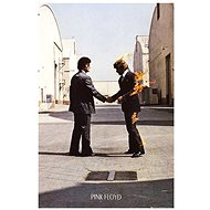 Pink Floyd - Ich wünschte du wärst hier - Poster 65 x 91,5 cm - Poster