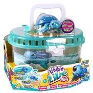 Little Live Pets - Schildkröte mit Tank - Spielset