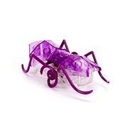 Hexbug Micro Ant lila - Mikroroboter