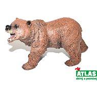 Atlas Braunbär