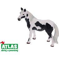 Atlas Pferd - entdeckt