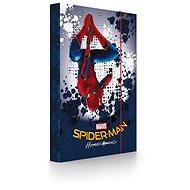 Karton P+P A4 Heftbox Spiderman - Hülle