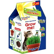 Kultivieren- Gras für ein Kätzchen - Kreativset