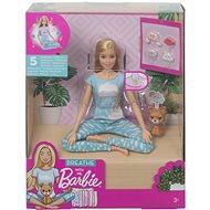 Mattel Barbie Wellness Meditations Puppe - Puppe