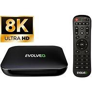 EVOLVEO MultiMedia Box C4 - Netzwerkplayer