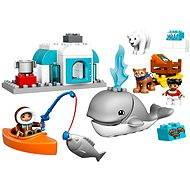 LEGO DUPLO 10803 Arktis - Baukasten