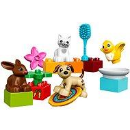 LEGO Duplo 10838 Haustiere - Baukasten