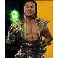 Mortal Kombat 11 Shang Tsung (PC) Steam DIGITAL - Gaming Zubehör
