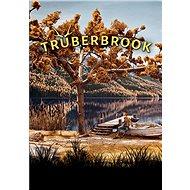 Truberbrook (PC) Steam DIGITAL - PC-Spiel