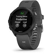 Garmin Forerunner 245 Grey - Smartwatch