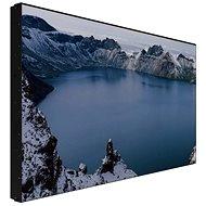 """Prestigio Indoor DS Wall Mount LCD 55"""" (FHD) PDSIN55WNN0L - Großformat-Display"""