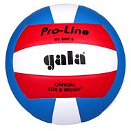 Gala BV 5011 S - Volleyball