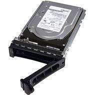 """DELL 2.5"""" HDD 2TB NL-SAS 7200 rpm Hot Plug für R340"""