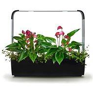 TREGREN T12 Gemüsegarten, schwarz - Smart-Blumentopf