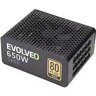 EVOLVEO G650 Netzteil - Schwarz - PC-Netzteil