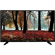 """50"""" Orava LT-1397 - Fernseher"""