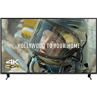 """49"""" Panasonic TX-49FX603E - Fernseher"""