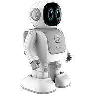 Robert Topjoy Dance - Roboter