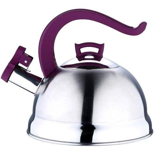 Bergner Topf mit Deckel BG-3741-AA-pur - Wasserkocher
