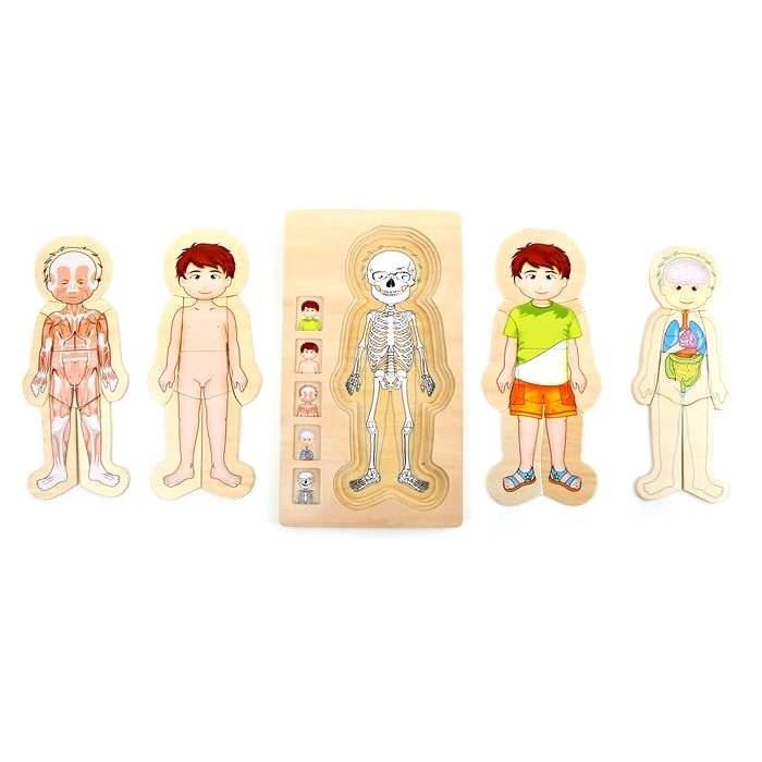 Puzzle - Anatomie Tim - Didaktisches Spielzeug